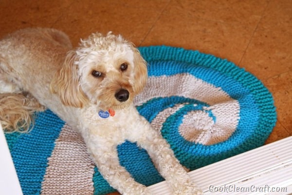 How to knit a seashell rug using Tshirt yarn (5)